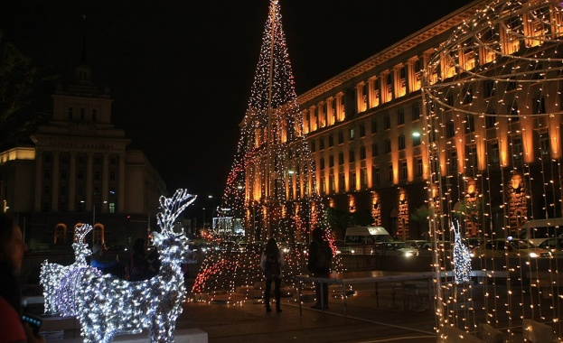 Коледната елха на София грейва на 1 декември