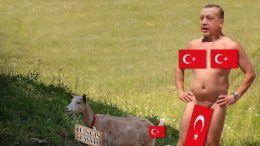 Как реагира София на случващото се в Турция?