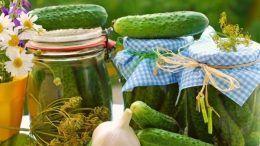 Буркан кисели краставици България