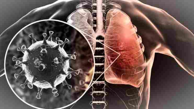 Най-важното за коронавирус: 15 въпроса и отговора